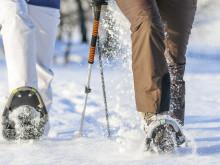 Schneeschuhlaufen: Abenteuer in der Winterlandschaft